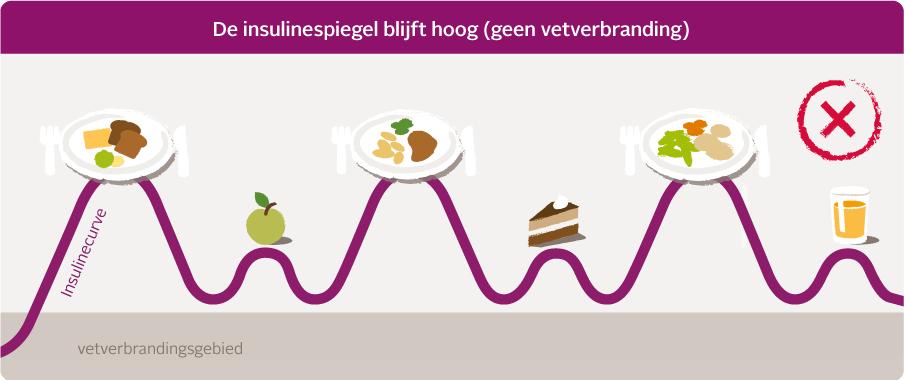 Insulinkurve rot desktop NL